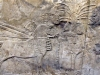 assyria-british-museum