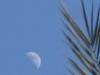 panorama-lune