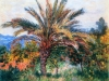 monet-1884-palm-tree-at-bordighera