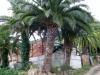 garden-magauda-charpentier-4