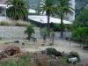 garden-magauda-charpentier-7