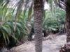garden-magauda-charpentier-8