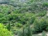 sasso-bordighera-italy-3