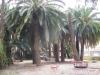 giardino-winter-bordighera-2014-07-09-1