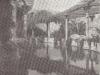 Jardin d'hiver Bordighera Ente autonomo stazione climatica