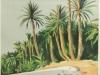 algerie-el-kantara-1948-e-bon