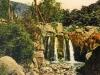 bordighera-palmeraie-vallon-postcard