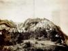 Lepinois 1853