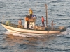 PECHE barques (2).JPG