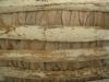 MAISONS plafonds (1).JPG