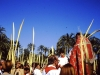 palmsunday-office-elche-2