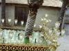 palmsunday-office-elche-procession-2