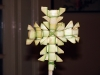 rameaux-egypte-croix-tressee-elraheb