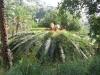 beodo-giardino-sperimentale