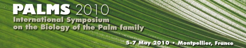 Symposium of the palm family