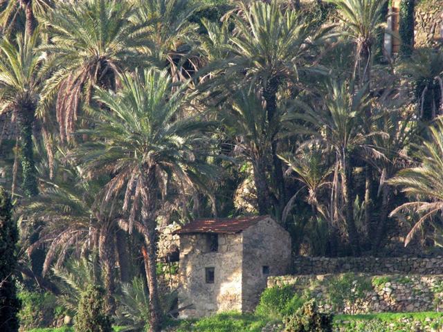 Le Jardin Expérimental de Bordighera