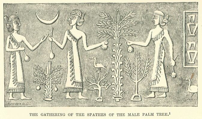 Assyrian palm tree. The Hague Museum