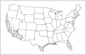 Map Canariensis USA