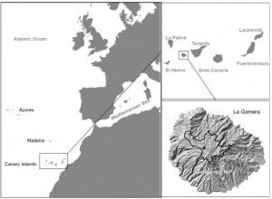 Map La Gomera
