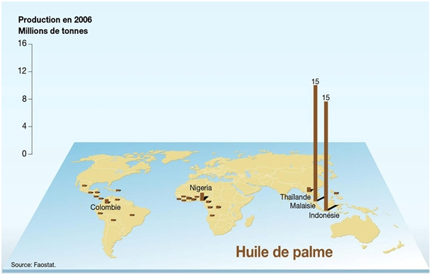 Oil palm production Le Monde Diplomatique