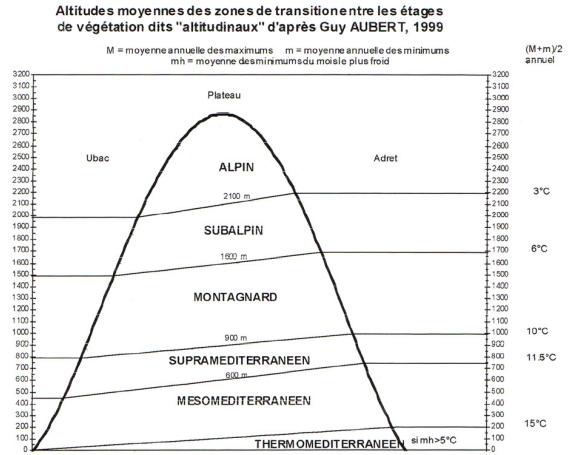 Phytosociologie. Etages de vegetation mediterraneens-alpins. Aubert 1999.