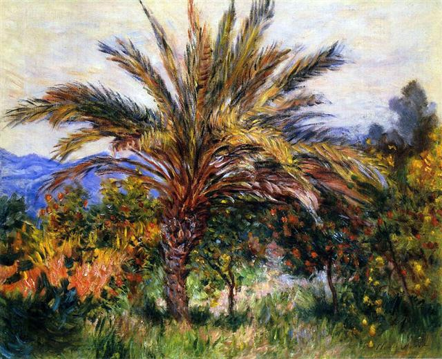 Monet 1884 bordighera