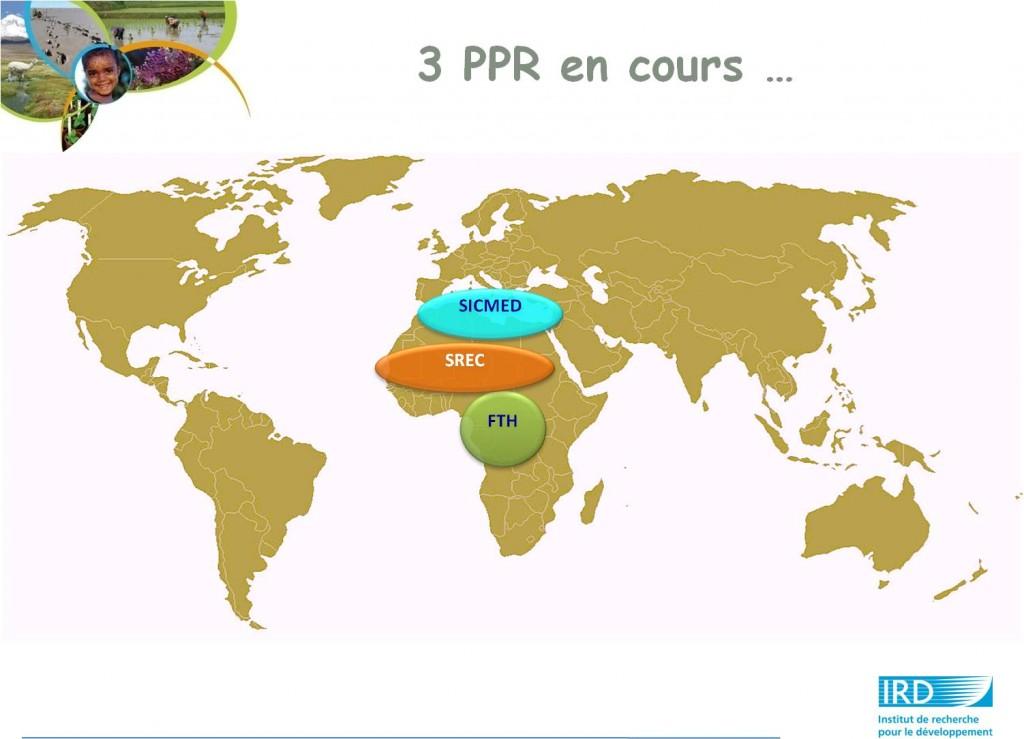 IRD PPR