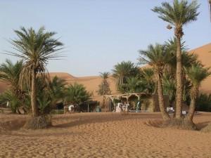 Sahel Oasis Adrar Tagant