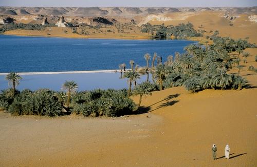tchad oasis du sahel