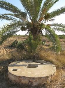 Hydrologie Kerkena puits domestique