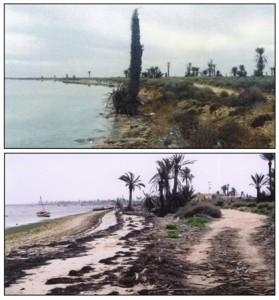 Pedologie Kerkena erosion marine